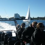 the run out of Manly - yachts & ferries