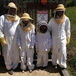 Special Bee Excursion