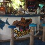 The bar at Coconuts