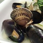 Mussels and clam in white wine sauce