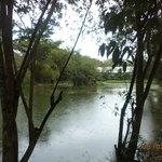 Linda vista do Lago