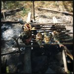 Fresh fish barbecued on the beach