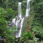 The Tamaraw Falls and Tamaraw water buffalo statues