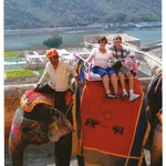 Fantastic elephant ride
