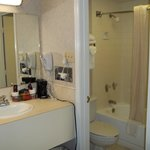 Sink/bathroom area room 350