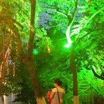 Surreal lights at night