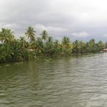 View of the backwaters from the Houseboat