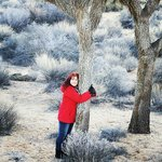 I Love Joshua Trees!