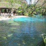 massive pool!