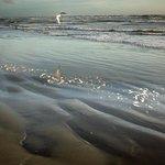 Foxton Beach