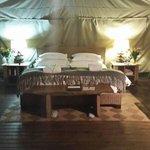 large comfy beds