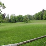 The sparse park