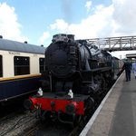 The Half Century Express our joint 50th Loco and train