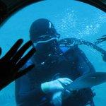 A diver