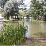 the wonderful looking lake