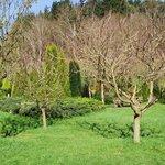 Jardines verdes en Amalurra