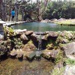 Valle de Anton Zoo
