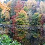 Autumn near Pitlochry