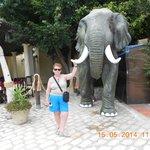éléphant à yasmine