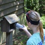 filling bird feeders