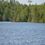 kayaking flour lake