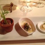 Amuse-bouche featuring an edible 'flower pot'