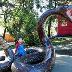 Jardim Zoológico da UCS