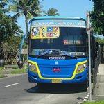 Public bushalte