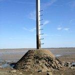A climbing pole