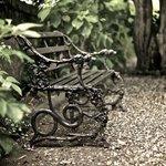 Ein ruhiges Plätzchen im Garten...