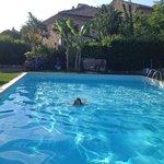 Morning swimming