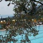 Poiano : il paradso del  Lago di Garda