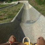 Alpine Slide down the mountain (fun but not in a dress after a wedding at the top)