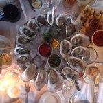 Ostron från 4 olika ostronställen 2 i Rhode Island 1 i vardera Massachusetts och Connecticut. Al