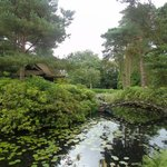 Tatton Hall, Japanese gardens (part of)