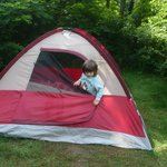 """Area behind our tent """"niche"""" site F132"""