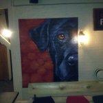 The Black Dog Of Oadby
