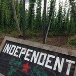 Independent hops