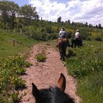 blue skies, green shrubs, happy riders & horses!