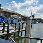 View from our table at The Dock