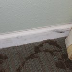 Scuff marks  present on all baseboards