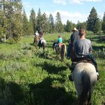 Horse trail rides available