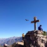 Cruz del Condor