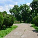 the botanical garden bucharest