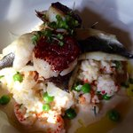 The pan fried sea bass with scallops on a bed of crayfish risotto