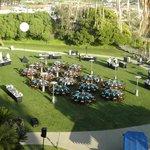 Wonderful evening reception on lawn