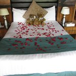 Room - rose petals on the bed when we entered (specially requested)
