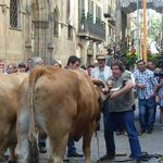 Around the corner, church celebration on Carrier de Ferran