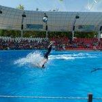 Одесса, в дельфинарии Немо