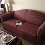 Sleeper sofa too